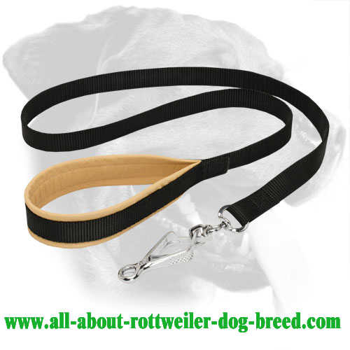 Nylon Rottweiler Leash with Nappa Leather Padded Handle