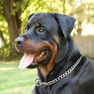 Rottweiler training Choke dog collar- Chain collar Dog Collar